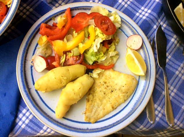7.5.16 - Schollenfilet,Salaat,Kartoffel,pescetarisch (1)