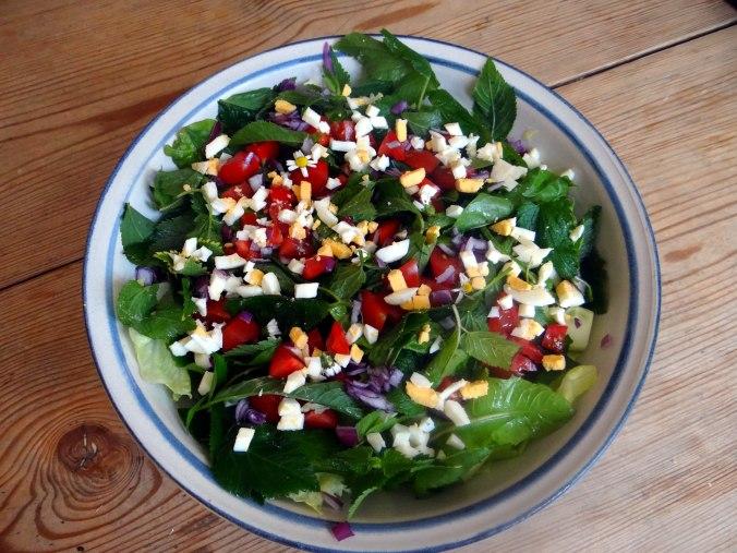 Wildkräuter Salat,Boullion Kartoffeln (16)