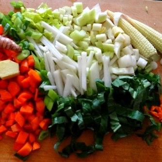 Asiatische Gemüsesuppe,vegan (2)