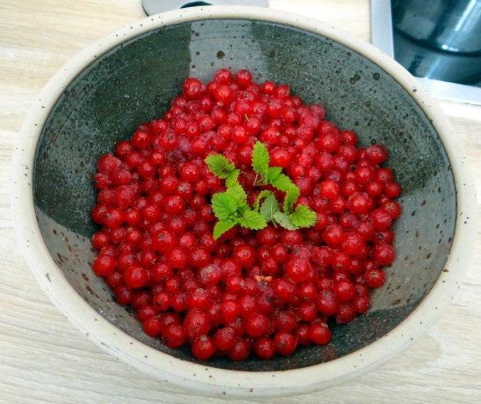 Matjes,Pellkartoffeln,Salat,Waffeln,Johannisbeeren (16)