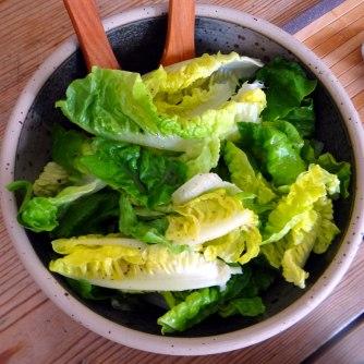 Hirsotto mit Champignon,Salat,Joghurt Eis,vegetarisch (16)