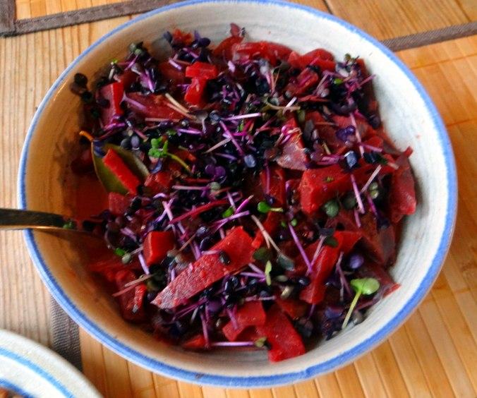 Rote Beete Gemüse,Geräucherte Forelle,Kartoffeln,Obstsalat (13)