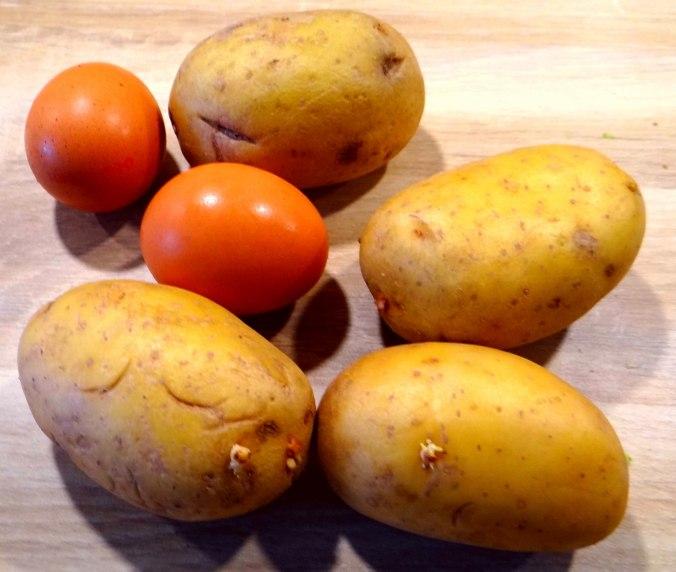 Kartoffelauflauf (7)