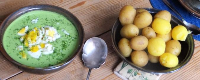 Grüne Soße mit Pellkartoffeln (11)