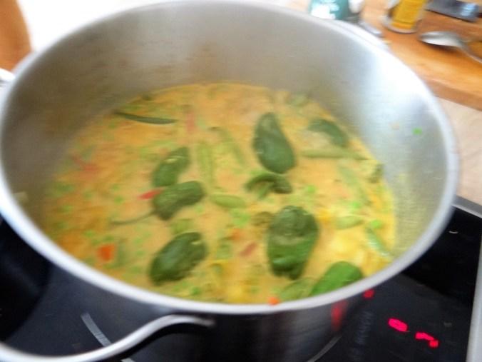 Gemüsesuppe,Süßkartoffel,Kokosmilch (10)