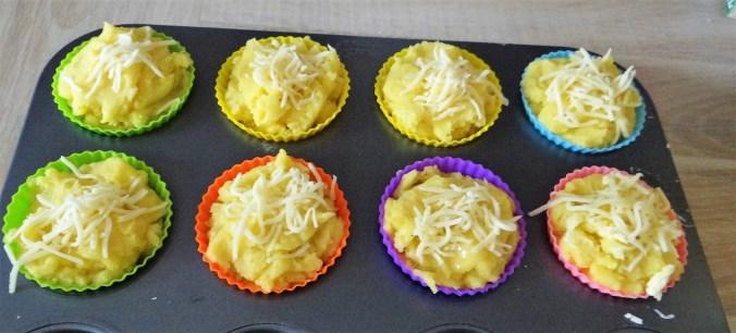 Kräutersaitlinge,Kartoffelküchlein,Baba Ganoush (12)