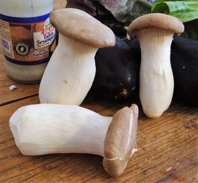 Kräutersaitlinge,Kartoffelküchlein,Baba Ganoush (7)
