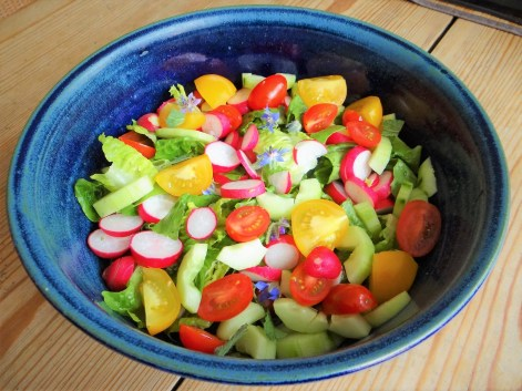 Rote Linsenspaghetti,kalte Tomatensauce (10)