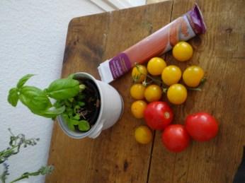 Rote Linsenspaghetti,kalte Tomatensauce (7)