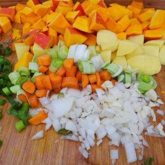 Kürbis-Gemüse Suppe (10)