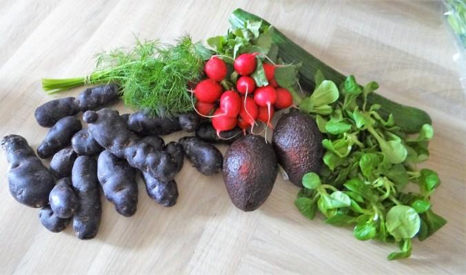 Lila Kartoffel,Guacamole,Salate (6).JPG