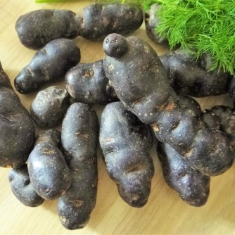 Lila Kartoffel,Guacamole,Salate (7)