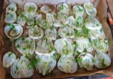 Fenchel und knusprige Kartoffelnester (9)