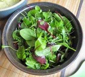 Topinambur-Kartoffelstampf,Petersilienpesto,Bohnensalat (21)