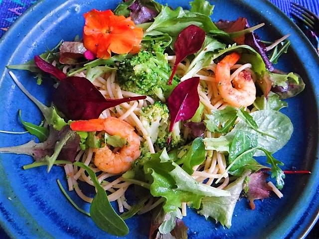 Limetten Spaghetti mit Garnelen und Brokkoli,bunter Salat (1)