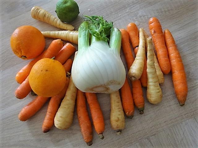 Ingwer Möhre,Pastinaken,gegrillter Fenchel,Orangensauce (6)
