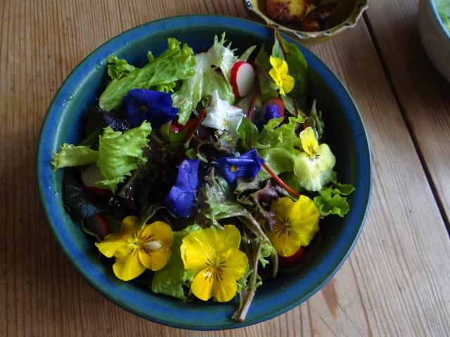 Salate und Feta