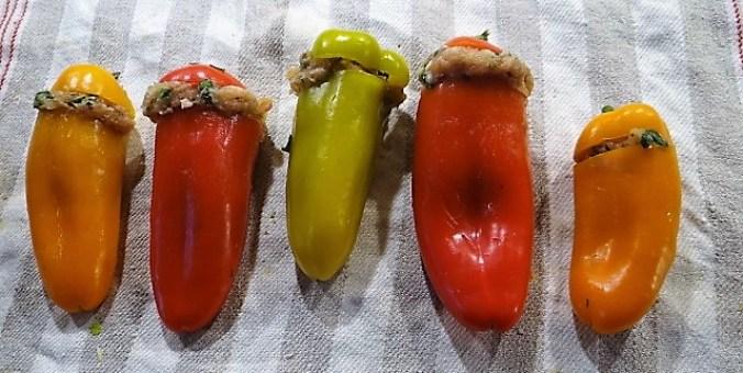 gefüllte Snackpaprika,Krautsalat,Tzatziki (12)