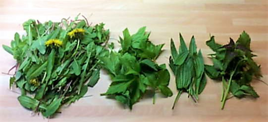 Linguine mit Wildkräuterpesto,    Pimientos