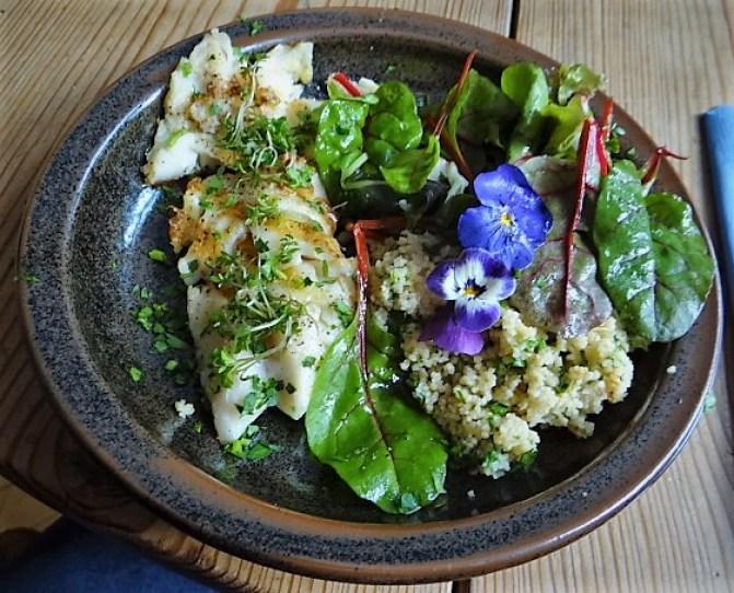 Rotbarsch,Couscous,Bunter Salat (1)