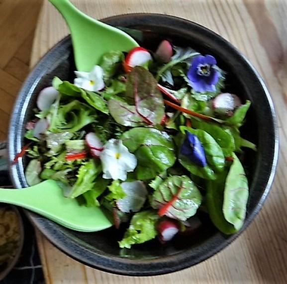 Rotbarsch,Couscous,Bunter Salat (11)