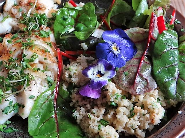 Rotbarsch,Couscous,Bunter Salat (2)