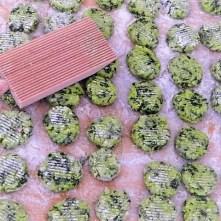 Bärlauch Gnocchis,Pilze (9)