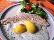 Forelle mit kalter Dillsauce und Feldsalat (20)