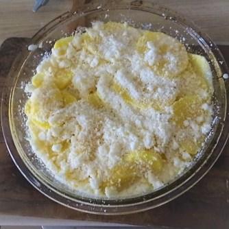 Navets,Kartoffelgratin,Salat (14)