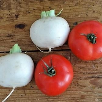 Gefüllte Mairübchen und Tomaten mit Polenta (6)