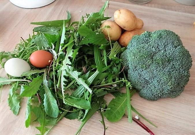 Wildkräutersauce ,Kartoffelstampf,Brokkoli (8)