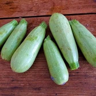 Gemüse,Salat und Ei (6)