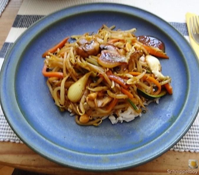 Mungbohnenkeimlinge mit Gemüse,Reis (16)
