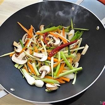 Mungbohnenkeimlinge mit Gemüse,Reis (9)
