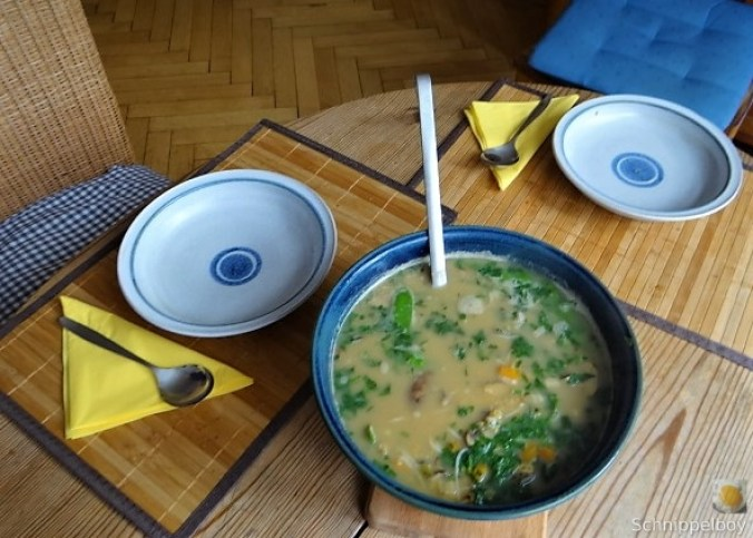Sommer Suppe (4)