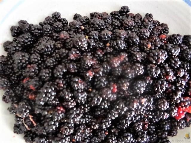 Brombeer Marmelade und Kompott (3)
