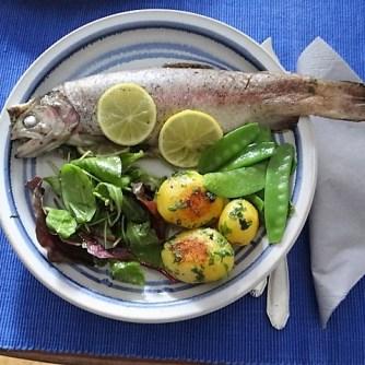 Forelle mit Petersilienkartoffel, Meerrettichdip und Salat (26)