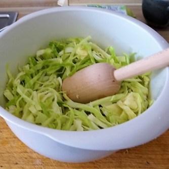 Kartoffelpuffer,geräucherteForelle,Weißkohlsalat,Nchtisch (9)