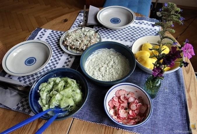 Matjes,Gurkensalat,Tzatziki,Radieschen,Pellkartoffeln (12)
