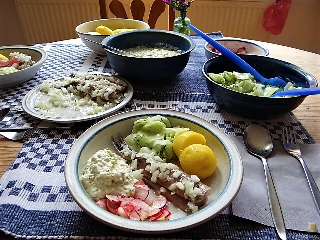 Matjes,Gurkensalat,Tzatziki,Radieschen,Pellkartoffeln (4)