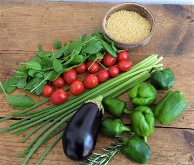 Knoblauchgrün,Gemüse,Kritharaki (6)