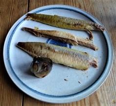 Kartoffelsalat und Makrele (14)