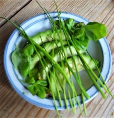 Tomatensalsa,Guacamole,Salat und Ei (13)