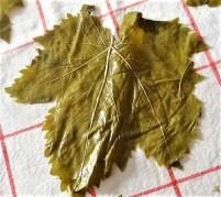 Gefüllte Weinblätter, Bohnensalat, Humus,. (15)