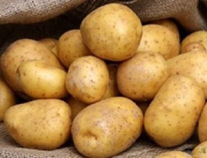 Kartoffelküchlein, Lachs, Meerrettichdip (11)