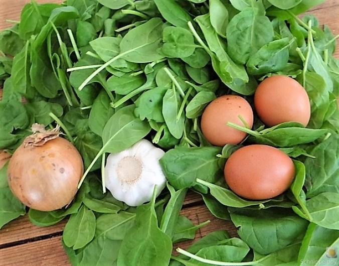 Spinatsuppe mit pochierten Eiern (10)