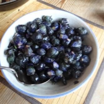 Lila Kohlröschen,Frikadellen, Kartoffeln (10)
