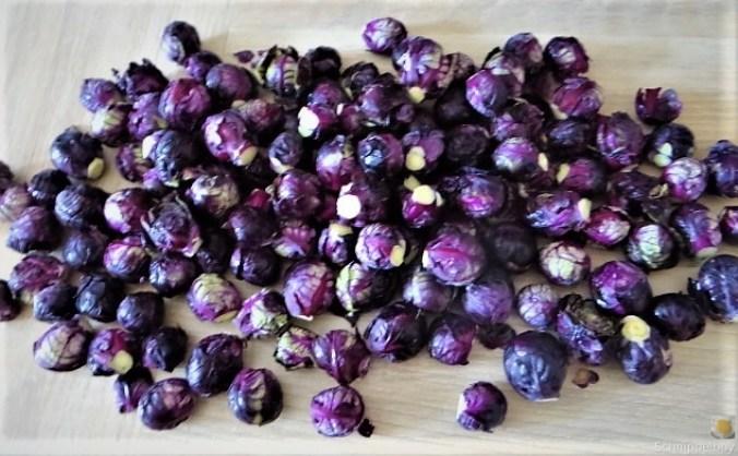 Lila Kohlröschen,Frikadellen, Kartoffeln (6)