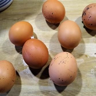 Eier in Kräutersauce (16)