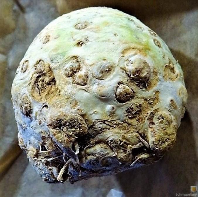 Sellerie,Kartoffelstampf und Apelmus (1)